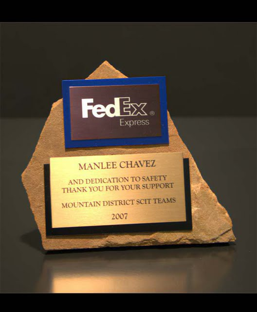Small Desktop Metal & Stone Awards - Free Form Single Stone